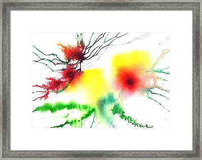 Blooms 3 Framed Print by Anil Nene