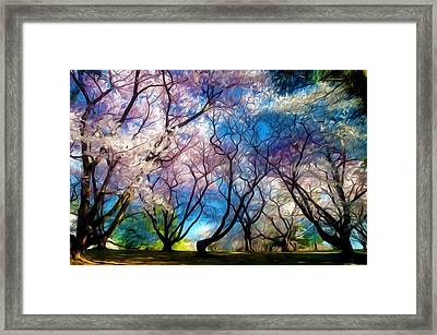 Blossom Cherry Trees Over Spring Sky Framed Print by Lanjee Chee