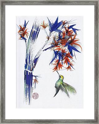 Blossom - Original Hummingbird Watercolor Painting Framed Print by Rebecca Rees