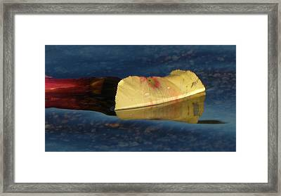 Blossom Rain 15 Framed Print by Georg Kickinger