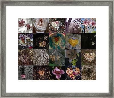 Blossom Rain I Framed Print by Georg Kickinger