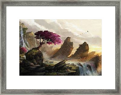 Blossom Sunset Framed Print by Steve Goad