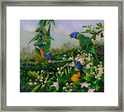 Blossom Time Framed Print by Sandra Sengstock-Miller