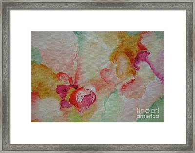 Blossoming 110 Framed Print