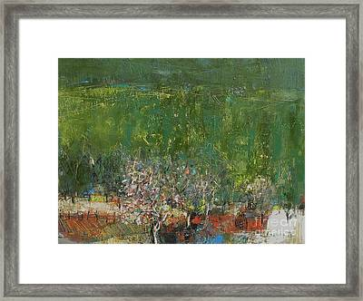 Blossoming Tree In The Garden Framed Print