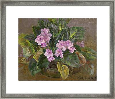 Blossoming Violet Framed Print by Victoria Kharchenko