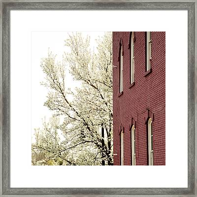 Framed Print featuring the photograph Blossoms And Brick by Courtney Webster