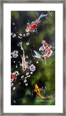 Blossoms And Koi Framed Print by Carol Avants