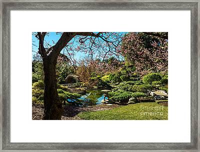 Blossoms In The Garden Framed Print by Jamie Pham