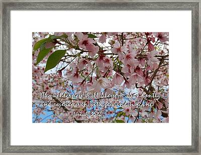 Blossoms Rejoice Framed Print by Jocelyn Friis