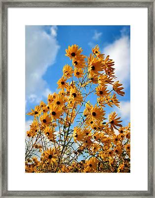 Blowin In The Wind Framed Print by Kristin Elmquist