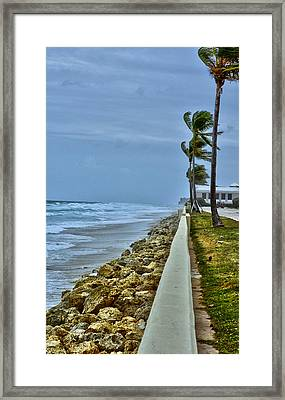 Blowin Winds Framed Print