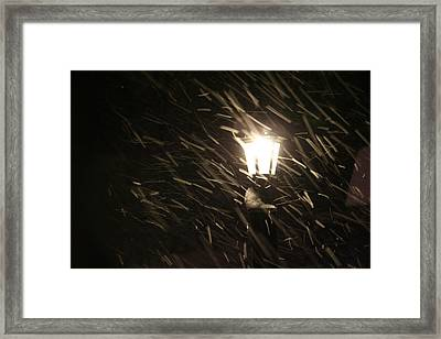 Blowing Snow Against Lamp Framed Print by Carolyn Reinhart