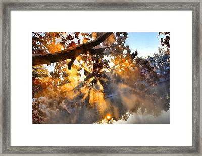 Blowing Snow Framed Print