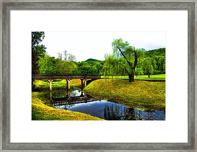 Blowing Spring Park - Tennessee Framed Print by David Patterson