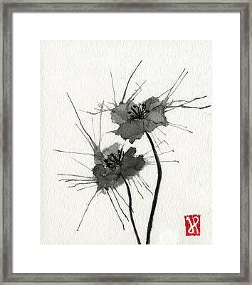 Blown Poppies Framed Print