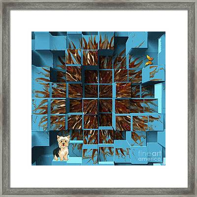 Blowout Framed Print by Liane Wright