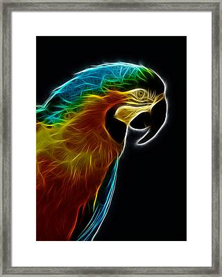 Blue And Gold Macaw Frac Framed Print
