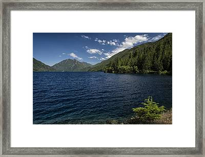 Blue And Green Framed Print by Joan Carroll