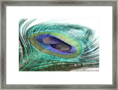 Blue And Silver Framed Print by Krissy Katsimbras