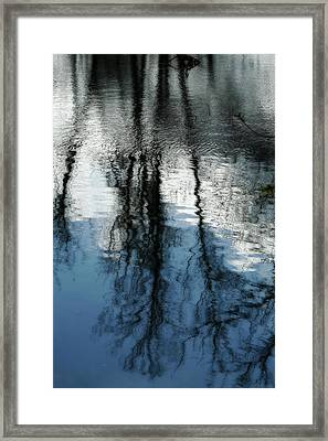 Blue And White Reflections Framed Print