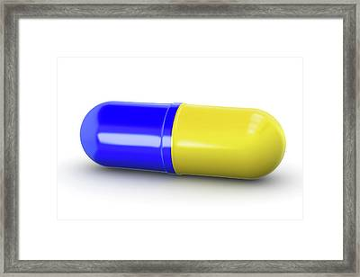Blue And Yellow Capsule Framed Print