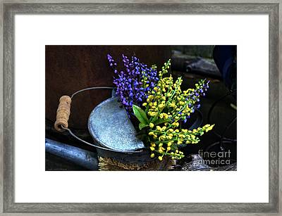 Blue And Yellow Flowers Framed Print by Mary Machare