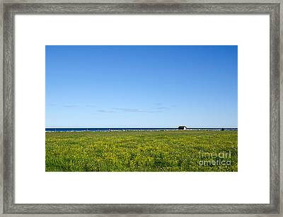 Framed Print featuring the photograph Blue And Yellow Landscape by Kennerth and Birgitta Kullman