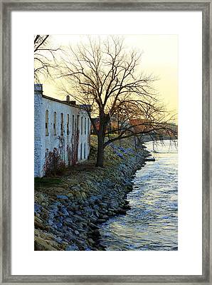 Framed Print featuring the photograph Blue And Yellow Morning by Viviana  Nadowski