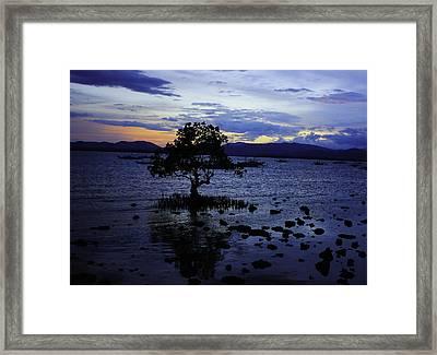 Blue Framed Print by Ange Sylvestri
