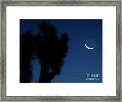 Blue Framed Print by Angela J Wright