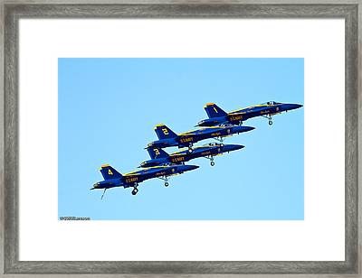 Blue Angles Framed Print by Brian Williamson