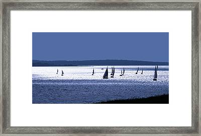Blue Armada II Framed Print by Douglas Pittman