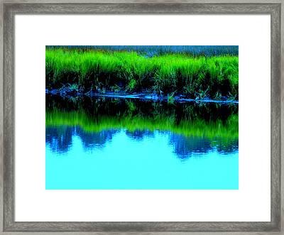 Blue Ashley Framed Print by Randall Weidner