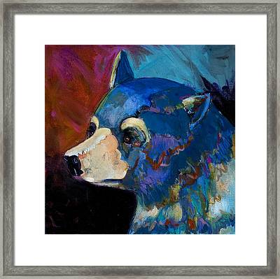 Blue Bear II Framed Print by Bob Coonts