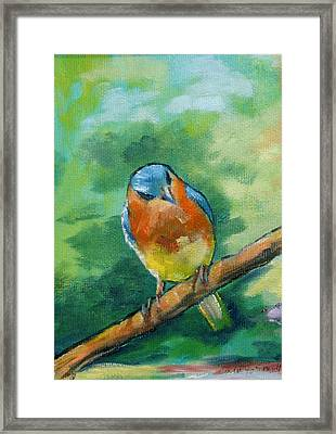 Blue Bird 1 Framed Print