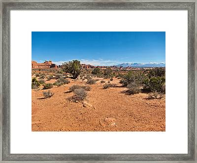 Blue Bird Day  Framed Print