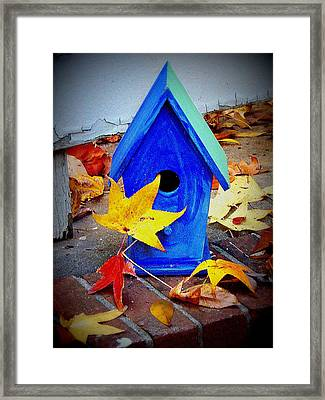 Framed Print featuring the photograph Blue Bird House by Rodney Lee Williams