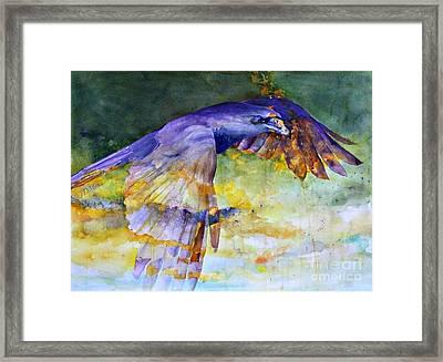 Blue Bird Framed Print by Janet Moss