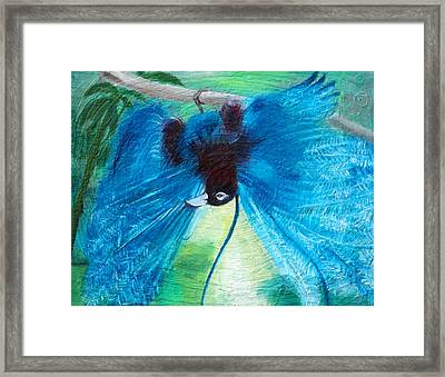 Blue Bird Of Paradise Framed Print