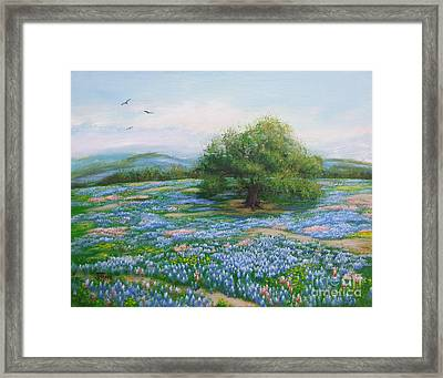 Blue Bonnet Field Framed Print