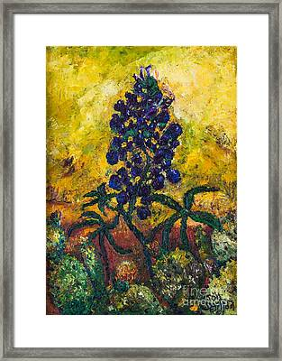 Blue Bonnet Framed Print