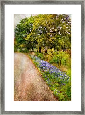 Blue Bonnet Path Framed Print by Joan Bertucci
