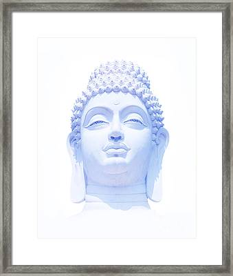 Blue Buddha Framed Print by Tim Gainey