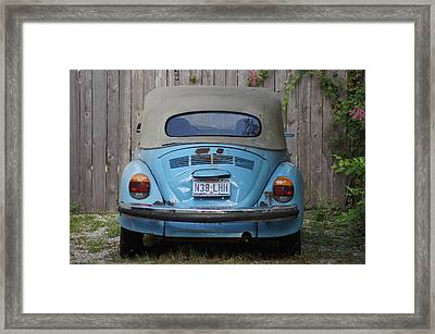 Blue Bug Framed Print