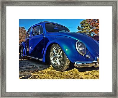 Blue Bug Framed Print
