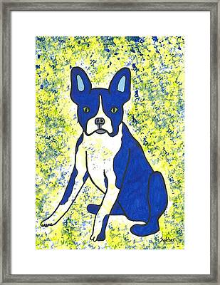 Blue Bulldog Framed Print