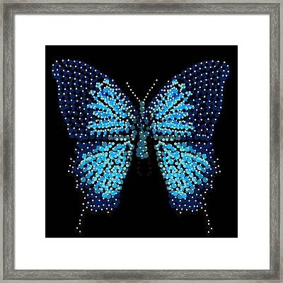 Blue Butterfly Black Background Framed Print by R  Allen Swezey