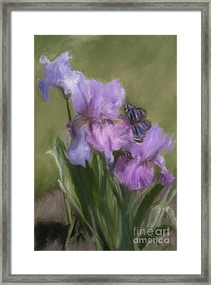 Blue Butterfly Landing Framed Print
