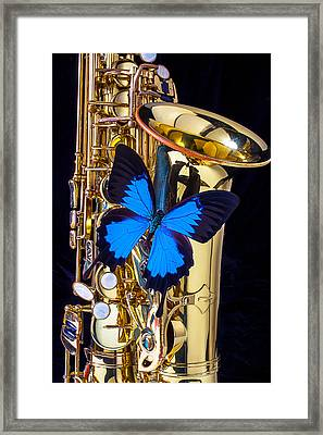 Blue Butterfly On Sax Framed Print by Garry Gay